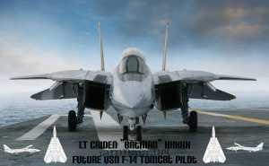 F-14 Tomcat_no_last_name